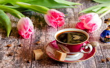 Pink tulips next to a cup of coffee