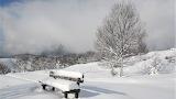 150 Neu - Snow