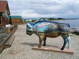 Hebgen Lake Buffalo