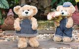 Flowers, toy, roses, bouquet, bear, teddy bear