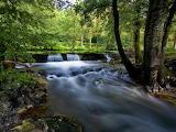 Rio en el bosque