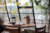 Coffee at the Conservatory