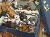Cats-cute-baby-kitty-cat-painting-animal-art-pictures-1440x1080