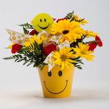 Somriure - Smile