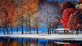 Snowy Autumn Day