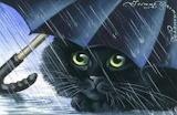 Chat sous parapluie