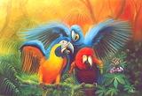 Colorful company - José Moreno Aparicio