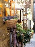 Flowers - Cortona - Tuscany, Italy