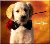 ☺I Love You...
