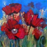 Theresa Shaw _ Poppies