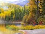 Golden Tamracks, Montana