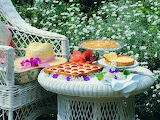 Other-summer-break-nature-garden-table