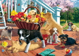 the picture of the dog Kingdom