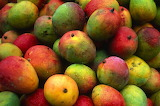 Mangoes-gettyimages-56a143265f9b58b7d0bd96bf