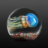 Glassblown Jellyfish