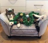 ^ Christmas tree