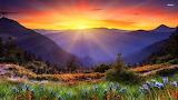 Spring Mountain Morning