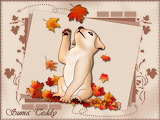Autum Cat