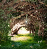 Faeries Forest Path