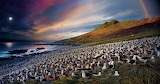 1920_04-stephenwilkes-nationalgeographic-ngm-epicmigrations-d2n-