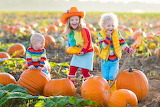 Kids picking pumpkins on Halloween pumpkin patch-ThinkstockPhoto