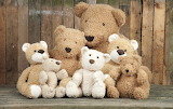 Toys Teddy bear Many 467001