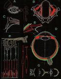 "Science tumblr scientificillustration ""Paul Sougy"" Eye"