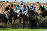 Silver Birch and Robbie Power 2007 Grand National
