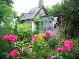 Cottage-garden-flowers-greenhouse