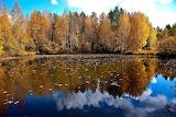 Осень 7
