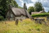 The Moor, Dartmoor