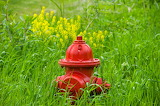 Complimentary-colors3 RED FIRE HYDRANT