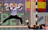 Goalie Gets Save