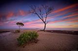 Wavy Sand Sunset
