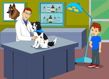 12 Pieces -Mozzi at the Pet Clinic