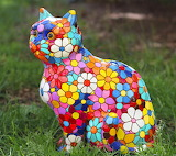 Barcino cat