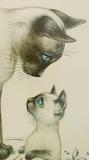 Blue eyes - drawing