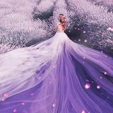 Lavender In Lavender