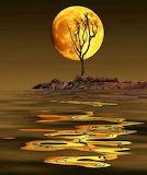Moonrise-6