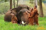 Buddhist Boys with a friend