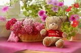 Flowers, basket, toy, bear, plush, teddy bear, window