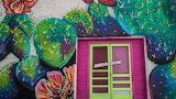 Painted Walls and Door