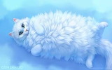 White Fluffy Cat