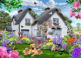 Delphinium-cottage