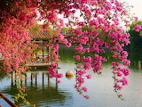In the park, Kunming, China