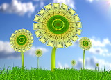 Flower, dollars, money, grass, sky