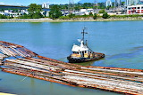 Tugboat-Hauling-Logs-Logs-In-The-River