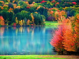 Fall-wallpaper-15885-16371-hd-wallpapers