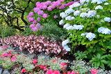 Blog summer colour 2