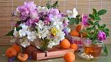 Box, tea, bouquet, briar, still life, peonies, apricots, clemati